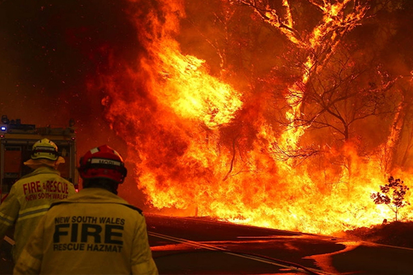 In the wake of the bushfires that continue to devastate the country, Cranes and Liftingis urging the crane industry to come together to support national initiatives contributing to relief efforts.